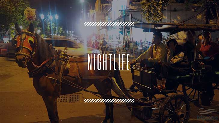 nightlife-tour-package